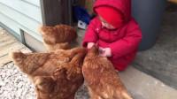 宝宝正在喂鸡,下三秒场面太突然,看完请憋住别笑!