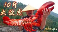 2400元买一只大龙虾,第一次吃这么贵的龙虾,100元一口真过瘾