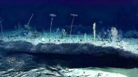 中国潜水艇深入水下3700米,眼前这一景象让人后怕,这还是地球吗