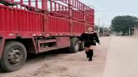 货车女司机倒车技术怎么样,下一幕,见证的时刻到了