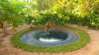 """农村小哥自制""""水帘洞"""",跳下水的那刻,太惊艳了!"""