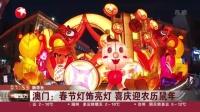 视频|澳门: 春节灯饰亮灯 喜庆迎农历鼠年
