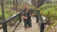 山火还未熄灭 暴雨再度袭击澳大利亚 带来洪涝风险