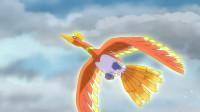 精灵宝可梦剑盾09:那一天的誓言!城都地区的凤王传说!!