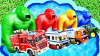 孩子的玩具启蒙乐园:油罐车、猴子、狮子、拖车、闪电麦昆、马!