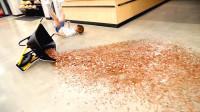 推着3万枚硬币摔倒,路人会有什么反应?小哥用行动证明