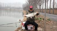 为何老钓手在冬天仍能上大鱼?他们懂2个基本原则,新手大多不知