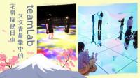 宅男逛teamLab和小姐姐们一起泡脚,一个汇集文艺女青年的展览!日本这个光影展览火遍全球。