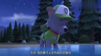 汪汪队:今天狗狗们在外面露营,其他狗狗都睡着了,只有灰灰不睡