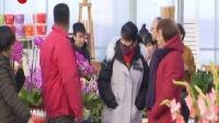 视频|鲜花绽放迎新春 休闲采摘乐游人