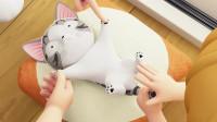 甜甜私房猫:小奇,你要开心哦