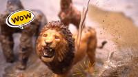 帮助狮子、猩猩动物冲洗身上的泥土