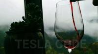 世界青田小舟山特斯拉干红葡萄酒