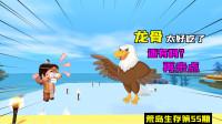 迷你世界荒岛生存55:熔岩黑龙的龙骨竟被鹰吃了?小表弟彻底愤怒