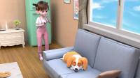 短腿小柯基:狗狗睡觉时别这么做!