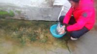 儿媳嫁福建,年夜饭婆婆用四斤鱼煮一锅闽南火锅,儿媳:得加辣酱