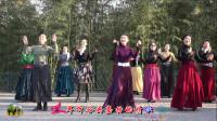 紫竹院广场舞《蓝色天梦》,编舞美姿依然老师