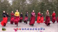 紫竹院广场舞《蓝色天梦》,赏心悦目的美!