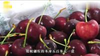 香港:无法进口到内地 滞留香港麒麟果跌4成 ,国外车厘子便宜600块最抵食!