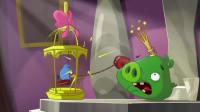趣味动画:猪猪是小鸟最好的朋友