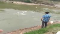 看到水里有鱼,狗比主人还激动,差点就跳湖里了!