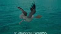 海盗不想讲故事,海鸥就集体威胁他,不然后果不堪设想