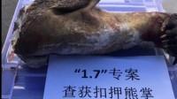 四川西昌破获一起特大猎捕野生动物案