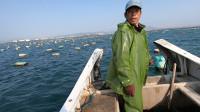 阿雄下血本买几包渔网,不料海上碰上乌鱼群,吃不完全部拿去送人
