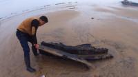 大退潮后整个沙滩变了样,阿阳第一个前去,发现遍地海鲜抓爆桶了