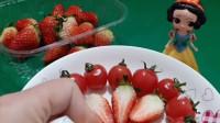 白雪要做水果沙拉了,用草莓和西红柿当材料,白雪的沙拉真有创意!