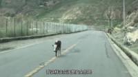 有强迫症的牛:车不能压黄线,这样走应该是安全的吧?