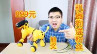 """899元买的智能机器狗抽奖送粉丝了,""""爱情公寓5""""同款偶!"""