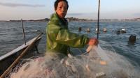 阿雄最近好运降临,出海遇上了小型黄瓜鱼群,好货抓了整整一大盆