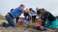 """海滩上的""""美人鱼"""",困在鱼网中,在人们的解救下重回大海!"""