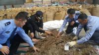 现场查获10.65吨穿山甲鳞片价值约1.1亿!温州检察机关批捕18人