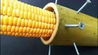 玉米剥不下来怎么办?小伙发明剥玉米神器,轻轻一转就能剥出完美玉米