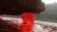 """南极地下涌出""""红水""""?科学家前来调查,发现了神奇的事情?"""