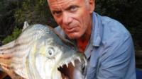 食人鱼真的会食人吗?老外作死实验,意想不到的事发生了