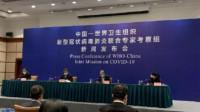 中国-世卫组织联合考察专家组:全国共有3000多名医务人员感染 九成来自湖北