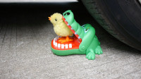 汽车压碎脆软的东西,实验车 VS 鳄鱼,释放压力放松心情!
