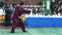 全国传统武术比赛优秀套路辑选 01 017 男子传统拳术