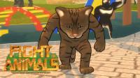 【小握解说】节奏感超强的防守升龙拳《动物之斗》溜达猫篇