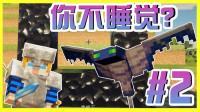【XY小源 我的世界】1.14.4光影追踪 高清材质大冒险 第2期 黑曜石与幻翼