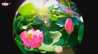 创意音乐视频《海誓蜃楼》如海誓蜃楼般的梦幻美景《精华版》《第129部》