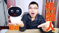 28块钱买了一个智能机器人,竟然有翻译和人工智能,是不是赚大了