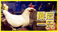 【XY小源】最后一只鸡 找小鸡来了