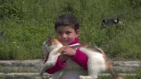 小孩子抱着猫玩耍,好治愈的画面