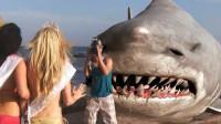 大鲨鱼上岸袭击人类,挑好看的下手,这部烂片给我尬笑了!