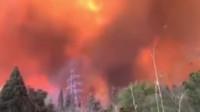西昌山火已造成19名地方扑火人员死亡