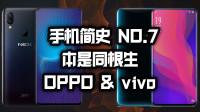 「小白测评」手机简史7 OPPO&vivo缔造蓝绿王朝的段永平是谁?